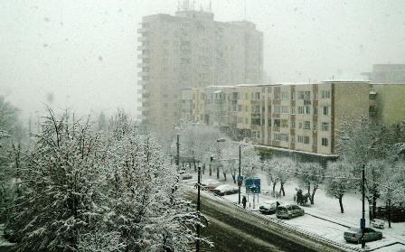 iarna-baia-mare-ninsoare